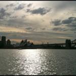 Spruced_Sydney2