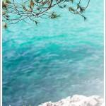 Spruced_Mallorca_Blue