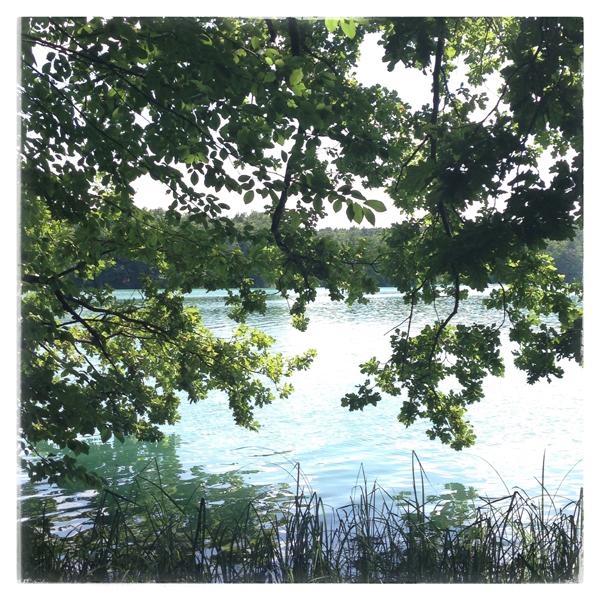 Spruced-CityguideBerlin-Liepnitzsee