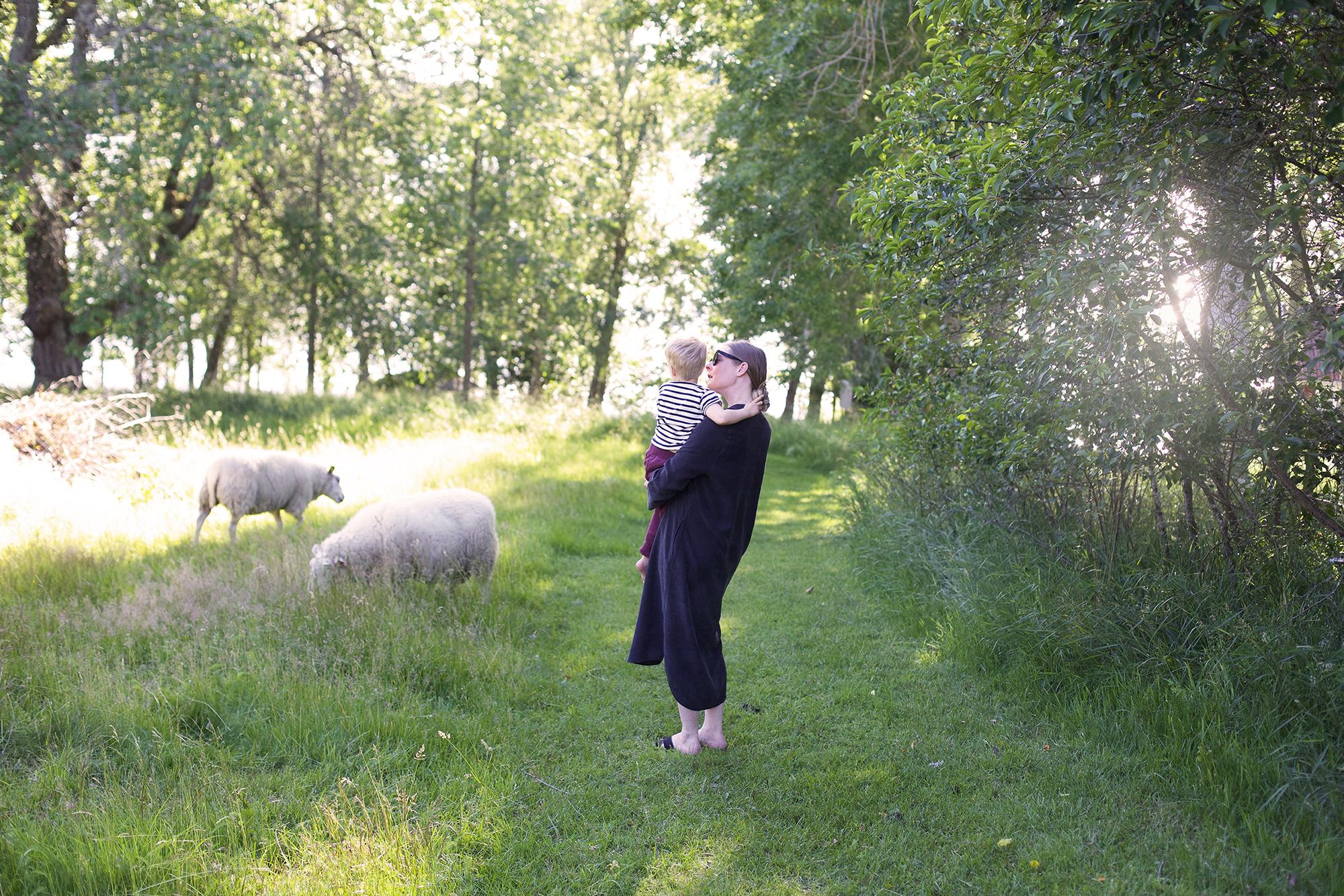 VisitSmåland-Vennebjörke8